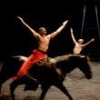 Dal 17 al 20 settembre 2014 il Festival TORINODANZA ospiterà la prima nazionale dello spettacolo GOLGOTA ideato e diretto da Bartabas